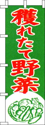 のぼり旗・ミニのぼり > 野菜・果物・特産・直売 > のぼり 獲れたて野菜